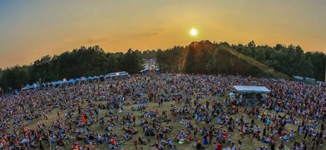Electric Forest Through The Eyes Of A First Timer