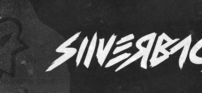 Silverback Remixes TC's 'Everything For A Reason'