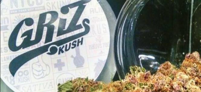 Future Funk Artist Griz Creates His Own Strain Of Weed