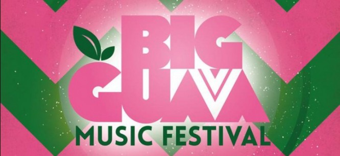 5 Ways Big Guava Music Festival Aims To Improve For Its Second Year