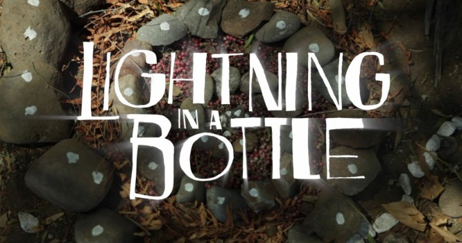 6 Lives That Have Been Changed By Lightning In A Bottle [Photo Gallery]