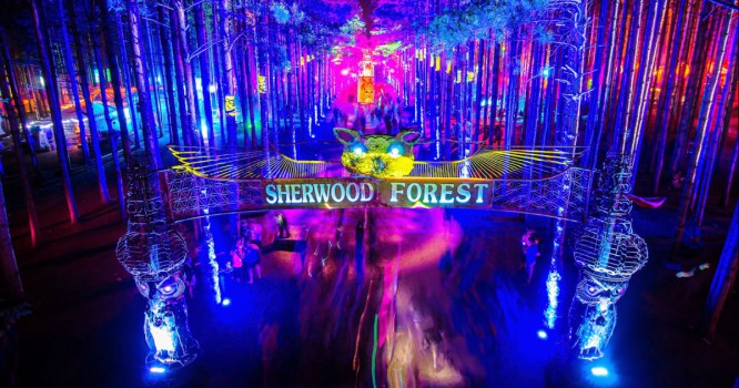 10 Reasons Electric Forest Will Open Your Eyes To A Whole New World