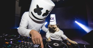 Marshmello, Diplo, Alesso & More Do the Mannequin Challenge [WATCH]