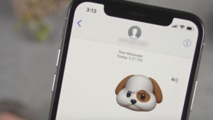 Animoji Karaoke - Taking Over the Internet One Song at a Time